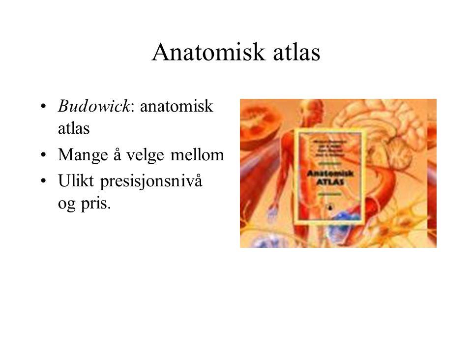 Anatomisk atlas Budowick: anatomisk atlas Mange å velge mellom Ulikt presisjonsnivå og pris.