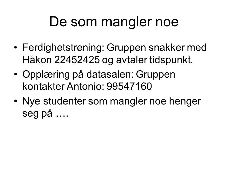 De som mangler noe Ferdighetstrening: Gruppen snakker med Håkon 22452425 og avtaler tidspunkt. Opplæring på datasalen: Gruppen kontakter Antonio: 9954