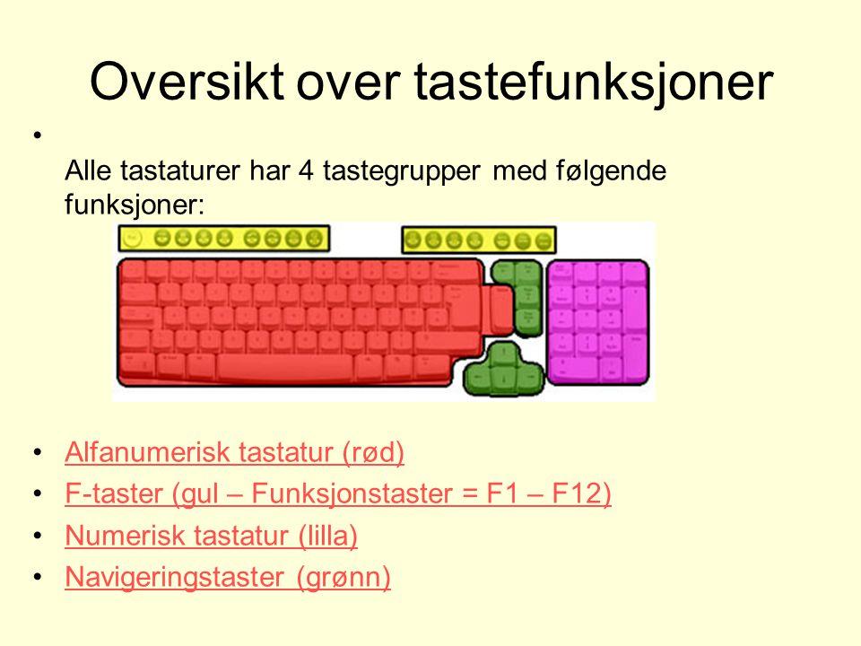 Oversikt over tastefunksjoner Alle tastaturer har 4 tastegrupper med følgende funksjoner: Alfanumerisk tastatur (rød) F-taster (gul – Funksjonstaster = F1 – F12) Numerisk tastatur (lilla) Navigeringstaster (grønn)