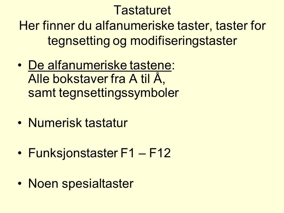 Tastaturet Her finner du alfanumeriske taster, taster for tegnsetting og modifiseringstaster De alfanumeriske tastene: Alle bokstaver fra A til Å, samt tegnsettingssymboler Numerisk tastatur Funksjonstaster F1 – F12 Noen spesialtaster