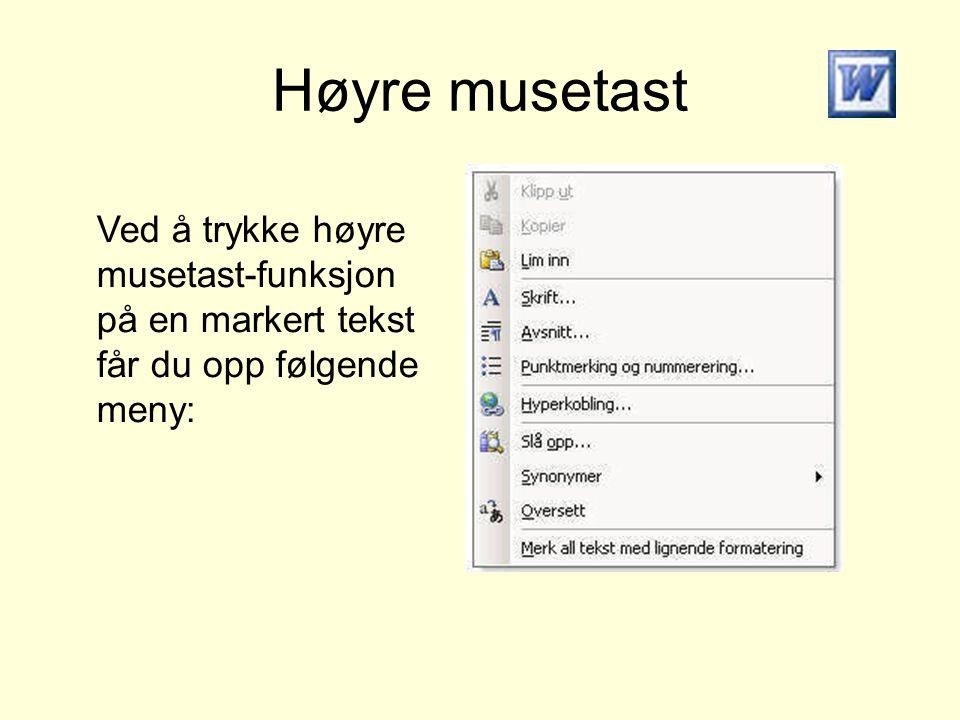 Høyre musetast Ved å trykke høyre musetast-funksjon på en markert tekst får du opp følgende meny: