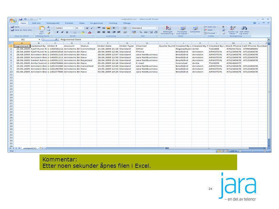 24 Kommentar: Etter noen sekunder åpnes filen i Excel.