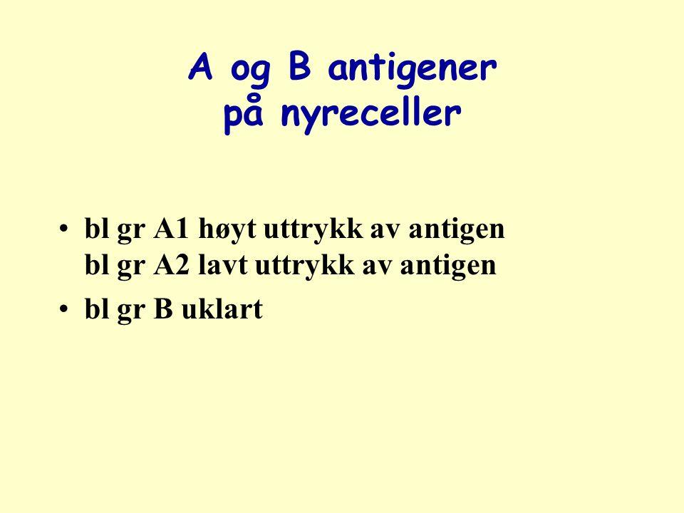 A og B antigener på nyreceller bl gr A1 høyt uttrykk av antigen bl gr A2 lavt uttrykk av antigen bl gr B uklart