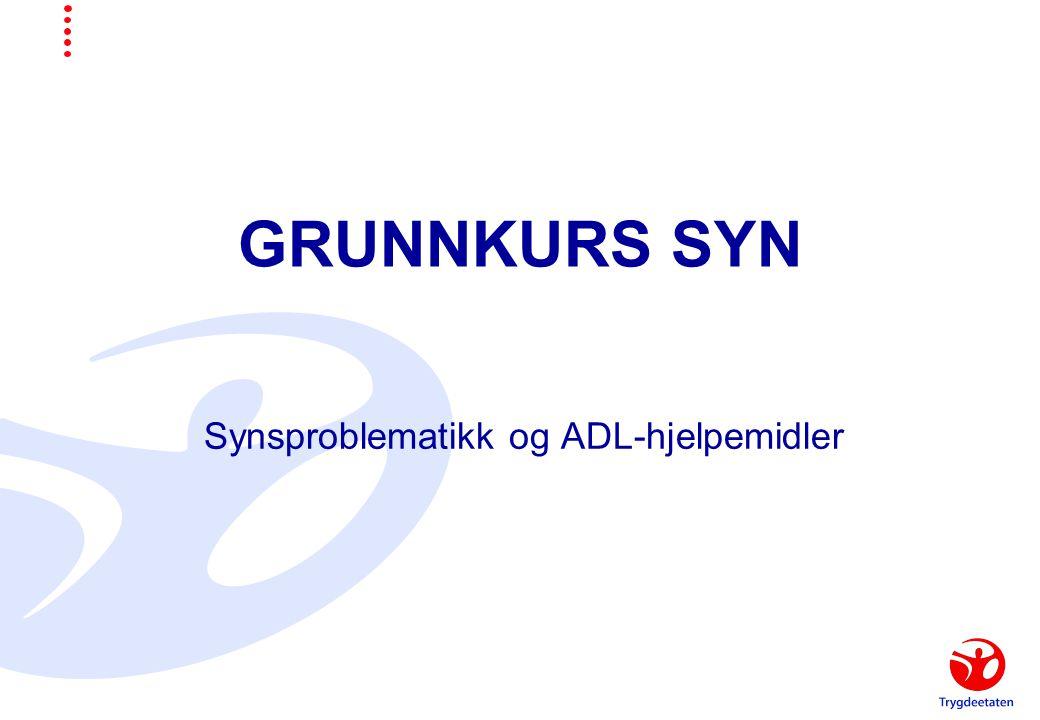 GRUNNKURS SYN Synsproblematikk og ADL-hjelpemidler