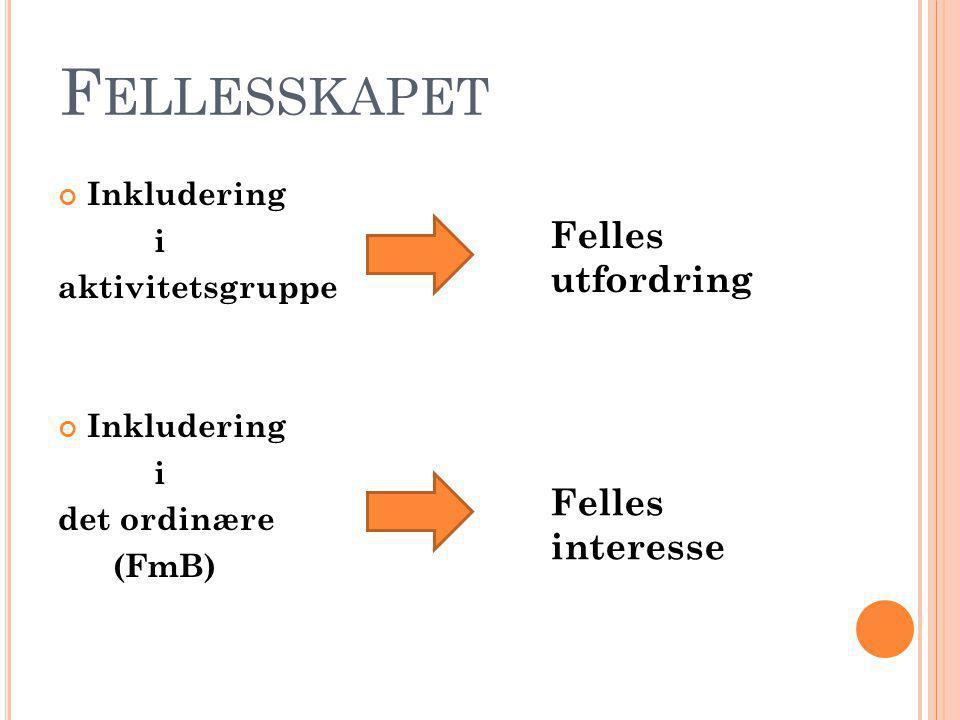 F ELLESSKAPET Inkludering i aktivitetsgruppe Inkludering i det ordinære (FmB) Felles utfordring Felles interesse