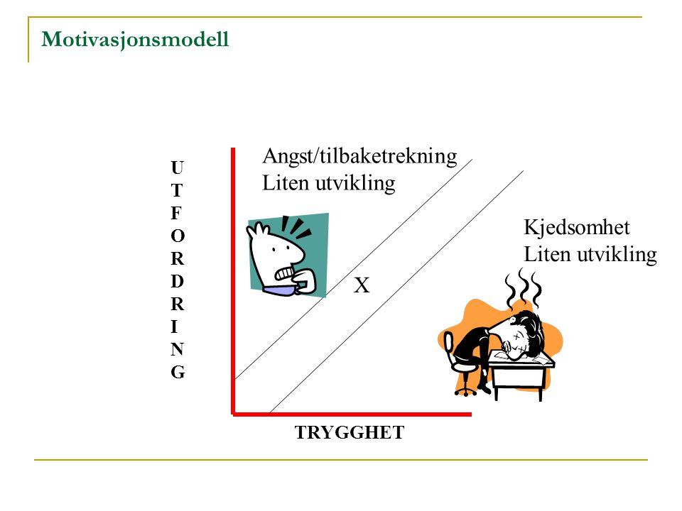 Motivasjonsmodell X Kjedsomhet Liten utvikling Angst/tilbaketrekning Liten utvikling UTFORDRINGUTFORDRING TRYGGHET