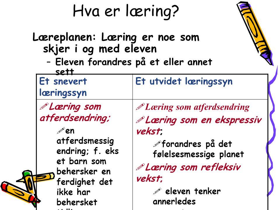 Hva er læring.