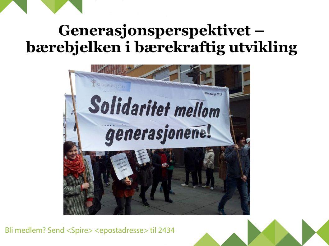 Generasjonsperspektivet – bærebjelken i bærekraftig utvikling