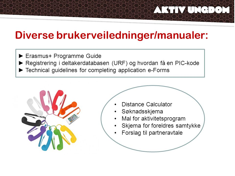 Diverse brukerveiledninger/manualer: ►Erasmus+ Programme Guide ►Registrering i deltakerdatabasen (URF) og hvordan få en PIC-kode ►Technical guidelines for completing application e-Forms Distance Calculator Søknadsskjema Mal for aktivitetsprogram Skjema for foreldres samtykke Forslag til partneravtale