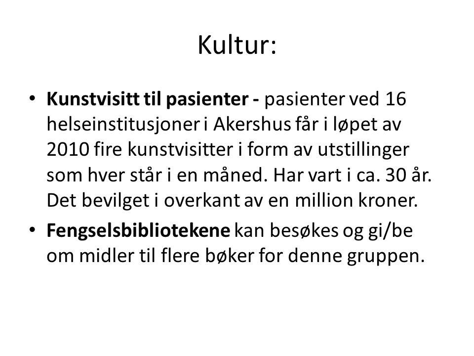 Kultur: Kunstvisitt til pasienter - pasienter ved 16 helseinstitusjoner i Akershus får i løpet av 2010 fire kunstvisitter i form av utstillinger som h