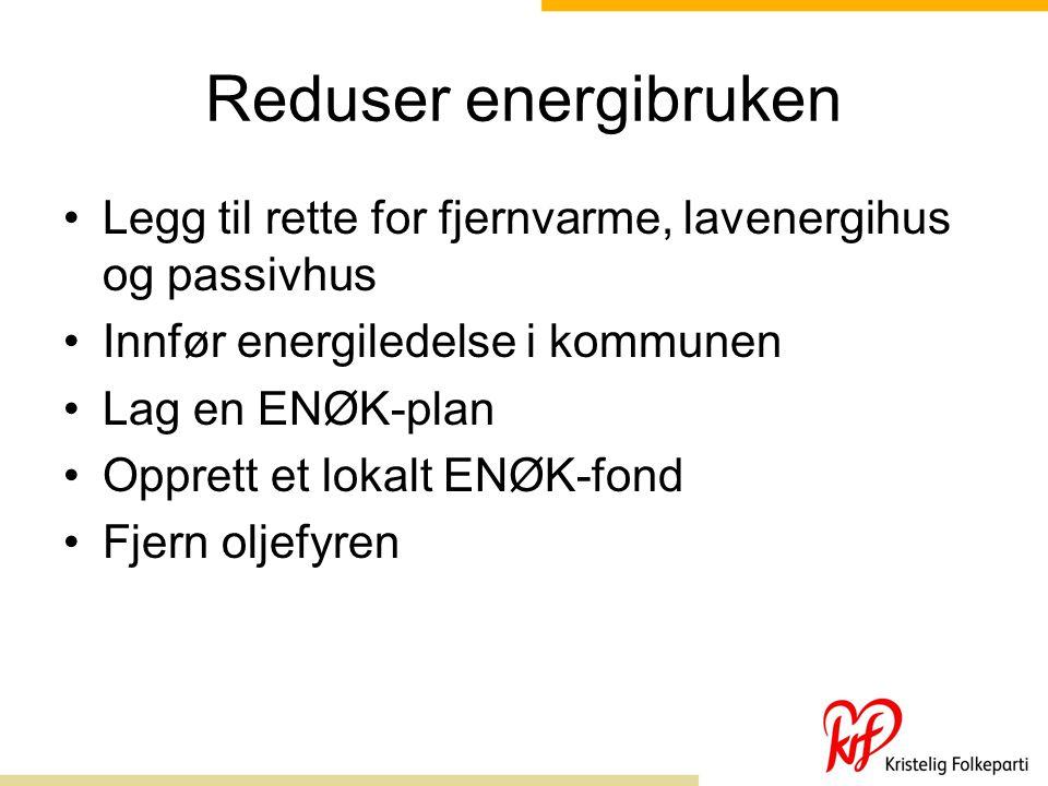 Reduser energibruken Legg til rette for fjernvarme, lavenergihus og passivhus Innfør energiledelse i kommunen Lag en ENØK-plan Opprett et lokalt ENØK-fond Fjern oljefyren
