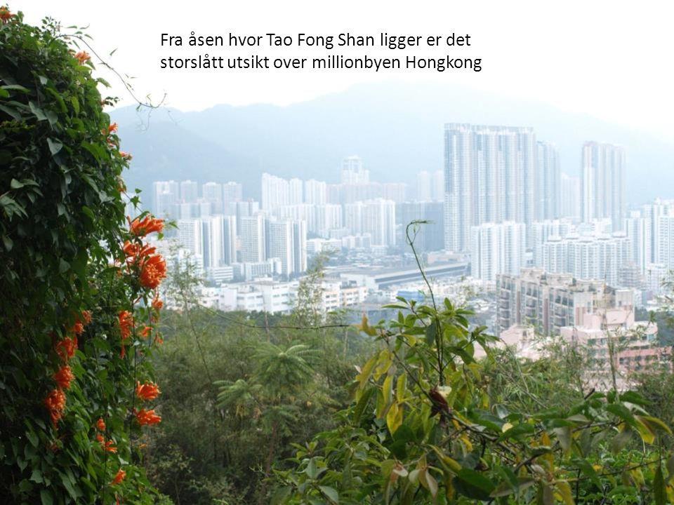 Fra åsen hvor Tao Fong Shan ligger er det storslått utsikt over millionbyen Hongkong