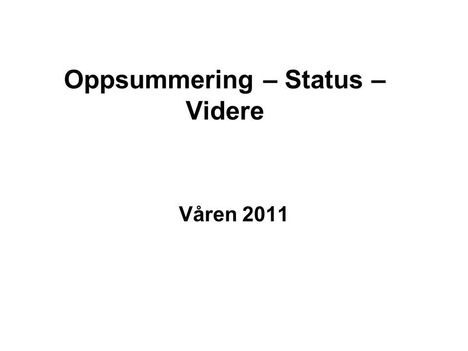 Oppsummering – Status – Videre Våren 2011