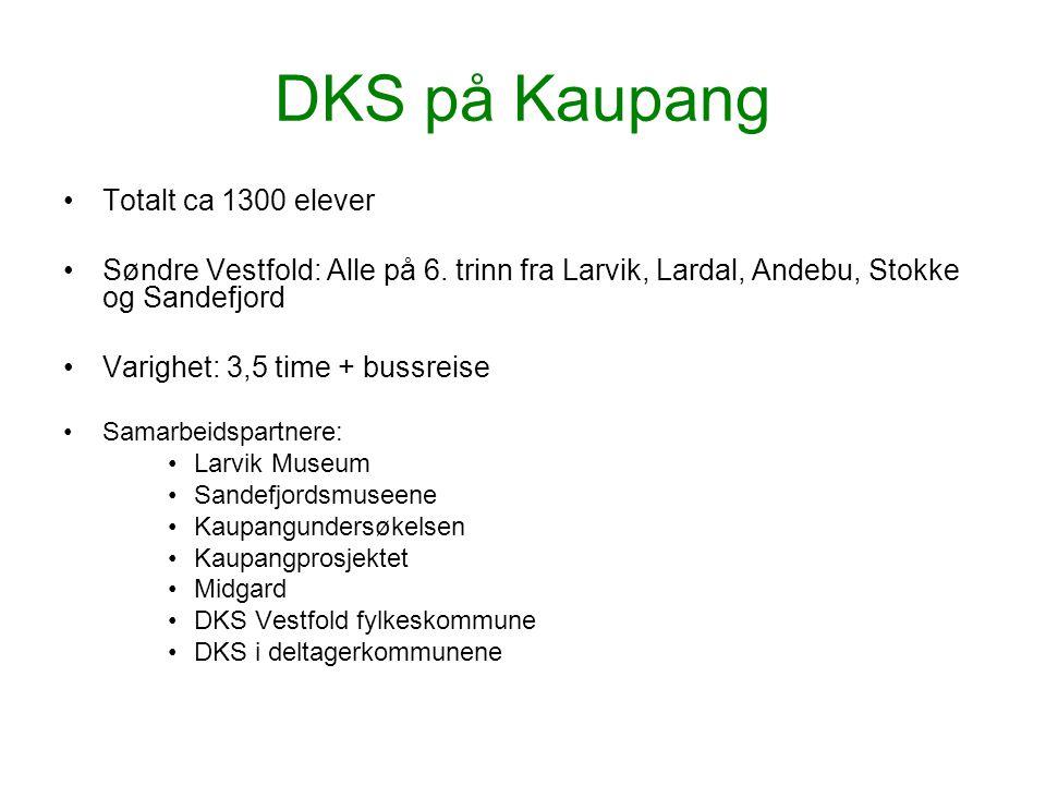 DKS på Kaupang Totalt ca 1300 elever Søndre Vestfold: Alle på 6. trinn fra Larvik, Lardal, Andebu, Stokke og Sandefjord Varighet: 3,5 time + bussreise