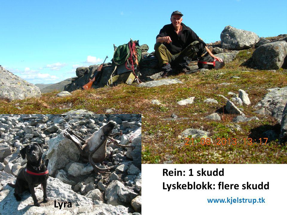 Rein: 1 skudd Lyskeblokk: flere skudd www.kjelstrup.tk Lyra