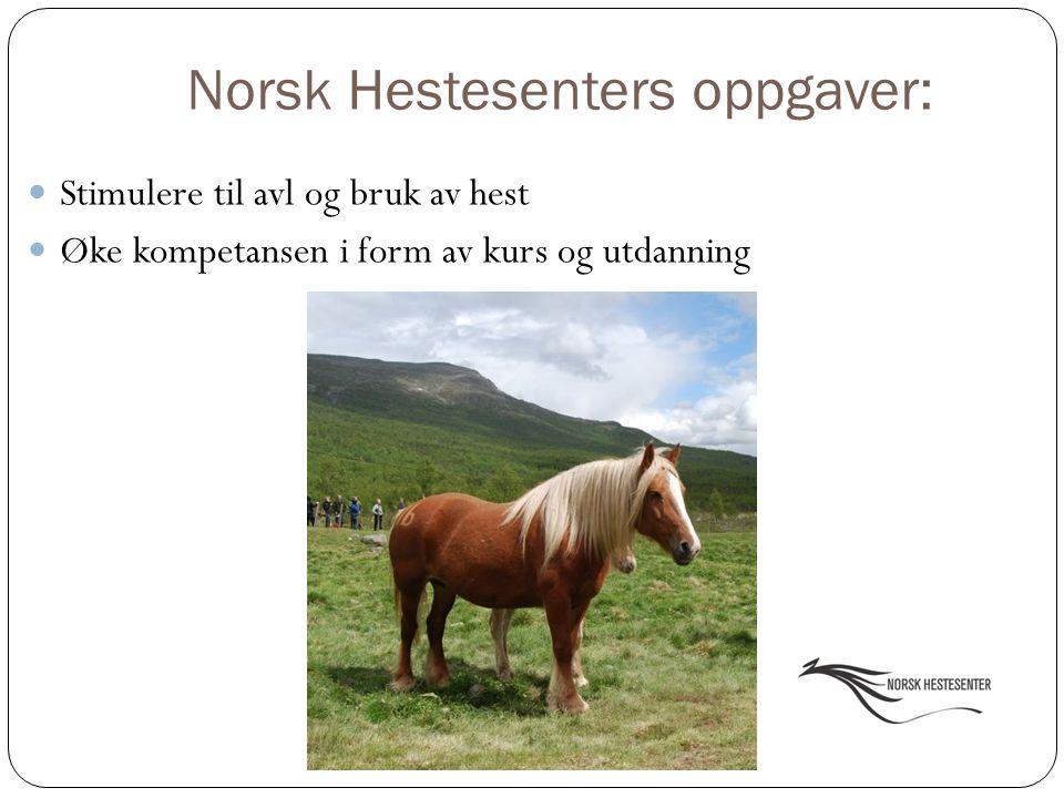 Norsk Hestesenters oppgaver: Stimulere til avl og bruk av hest Øke kompetansen i form av kurs og utdanning