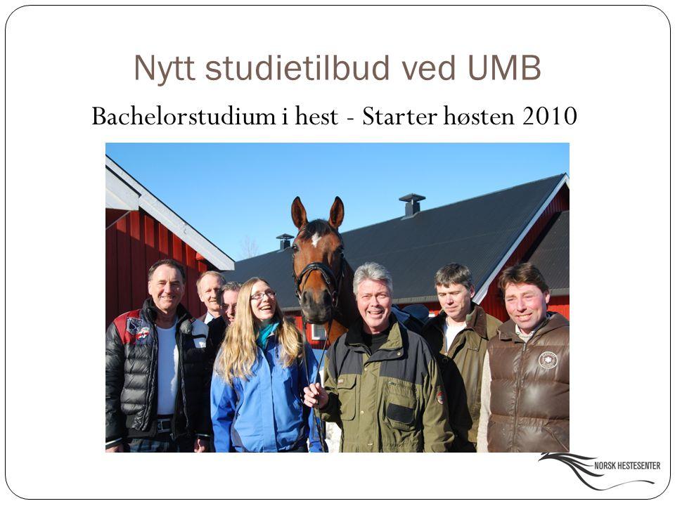 Nytt studietilbud ved UMB Bachelorstudium i hest - Starter høsten 2010