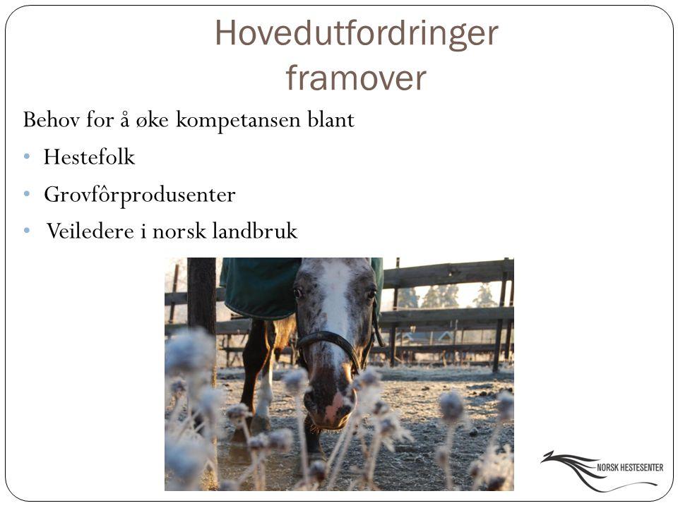 Hovedutfordringer framover Behov for å øke kompetansen blant Hestefolk Grovfôrprodusenter Veiledere i norsk landbruk