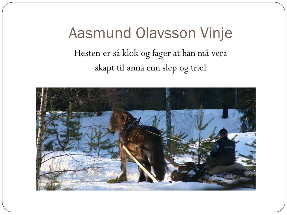 Aasmund Olavsson Vinje Hesten er så klok og fager at han må vera skapt til anna enn slep og træl