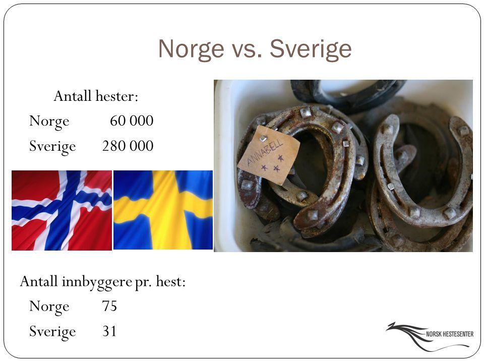 Norge vs. Sverige Antall hester: Norge 60 000 Sverige 280 000 Antall innbyggere pr. hest: Norge 75 Sverige 31