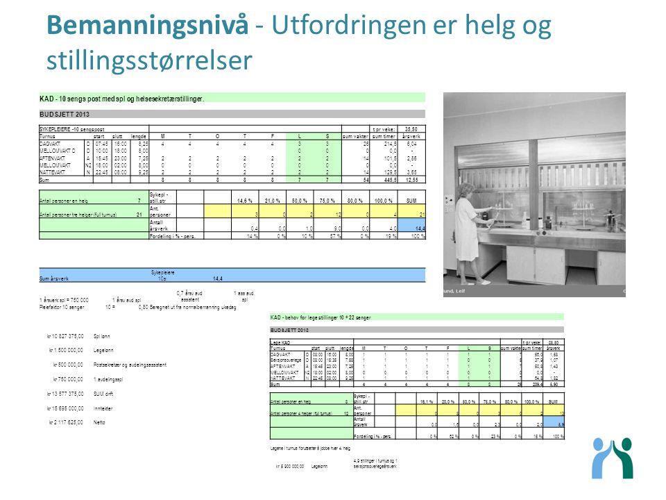 Bemanningsnivå - Utfordringen er helg og stillingsstørrelser KAD - behov for lege stillinger 10 + 22 senger BUDSJETT 2013 Lege KAD t pr veke:35,50 Tur