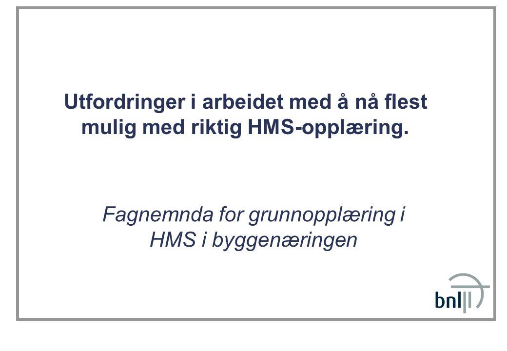Utfordringer i arbeidet med å nå flest mulig med riktig HMS-opplæring. Fagnemnda for grunnopplæring i HMS i byggenæringen