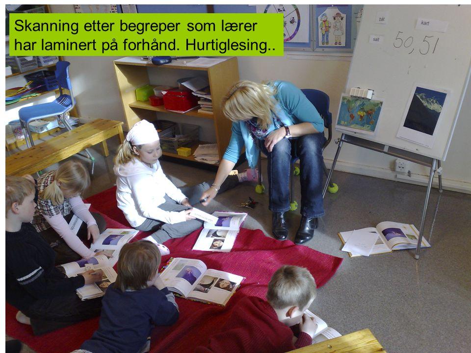 Skanning etter begreper som lærer har laminert på forhånd. Hurtiglesing..