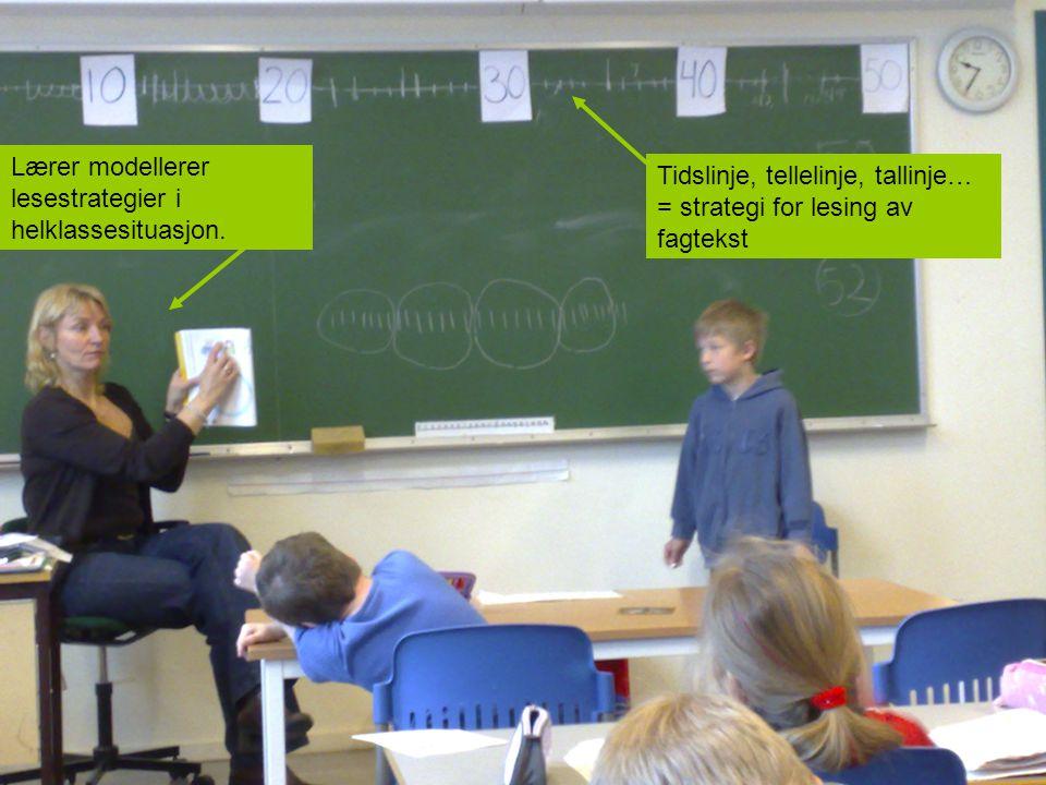 Tidslinje, tellelinje, tallinje… = strategi for lesing av fagtekst Lærer modellerer lesestrategier i helklassesituasjon.