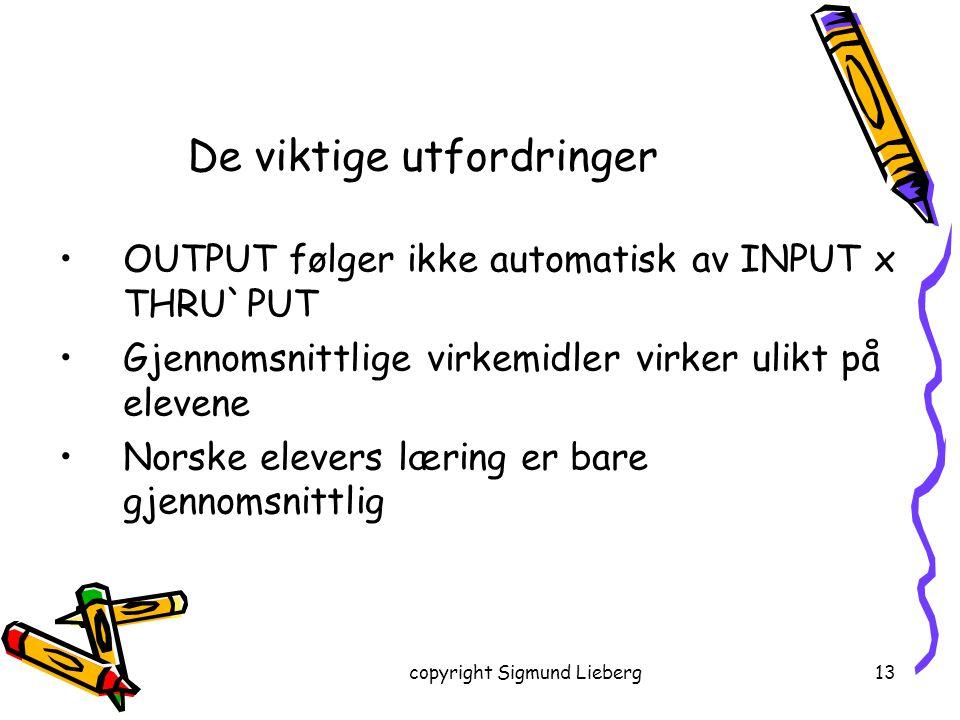 copyright Sigmund Lieberg13 OUTPUT følger ikke automatisk av INPUT x THRU`PUT Gjennomsnittlige virkemidler virker ulikt på elevene Norske elevers læri