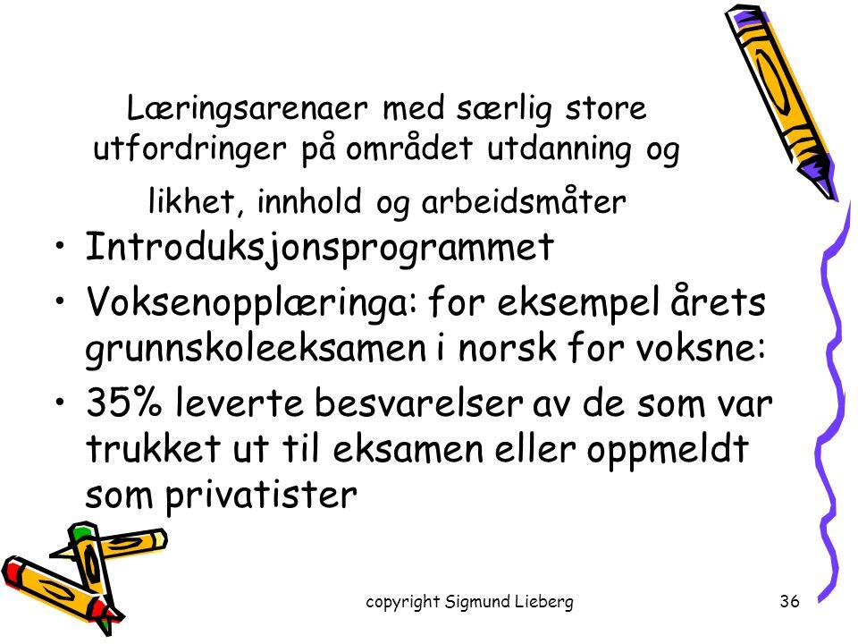 copyright Sigmund Lieberg36 Læringsarenaer med særlig store utfordringer på området utdanning og likhet, innhold og arbeidsmåter Introduksjonsprogramm