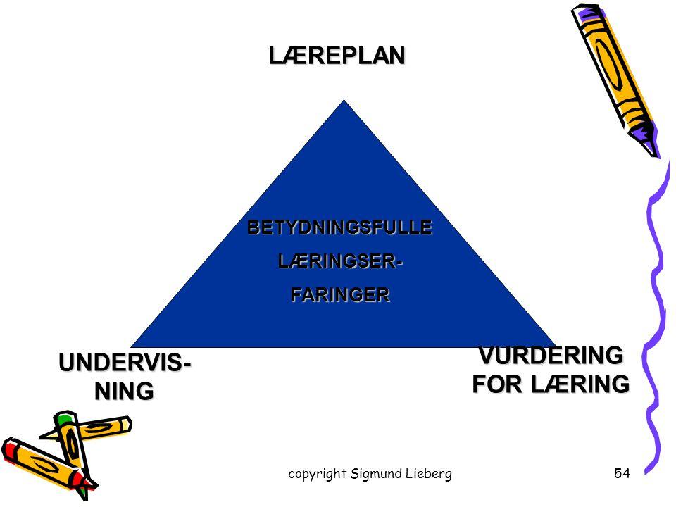 copyright Sigmund Lieberg54 LÆREPLAN BETYDNINGSFULLELÆRINGSER-FARINGER UNDERVIS- NING VURDERING FOR LÆRING