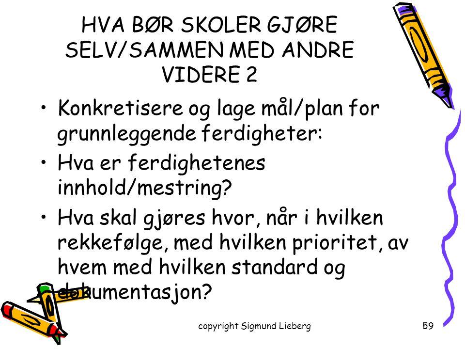 copyright Sigmund Lieberg59 HVA BØR SKOLER GJØRE SELV/SAMMEN MED ANDRE VIDERE 2 Konkretisere og lage mål/plan for grunnleggende ferdigheter: Hva er fe