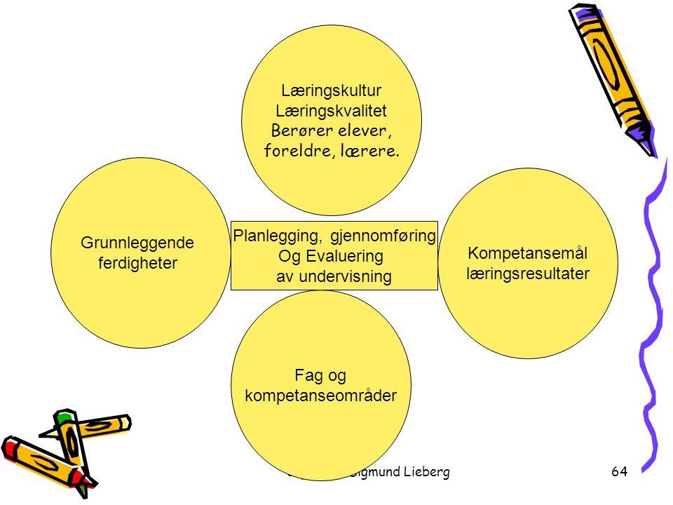 copyright Sigmund Lieberg64 Grunnleggende ferdigheter Planlegging, gjennomføring Og Evaluering av undervisning Fag og kompetanseområder Læringskultur