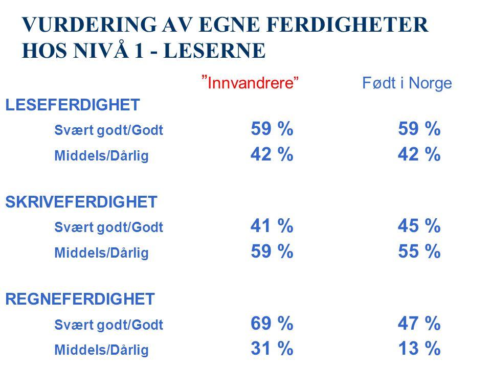 VURDERING AV EGNE FERDIGHETER HOS NIVÅ 1 - LESERNE Innvandrere Født i Norge LESEFERDIGHET Svært godt/Godt 59 %59 % Middels/Dårlig 42 %42 % SKRIVEFERDIGHET Svært godt/Godt 41 %45 % Middels/Dårlig 59 %55 % REGNEFERDIGHET Svært godt/Godt 69 %47 % Middels/Dårlig 31 %13 %