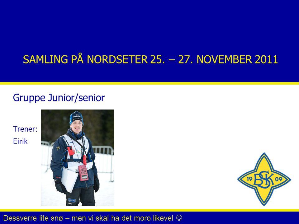 SAMLING PÅ NORDSETER 25. – 27. NOVEMBER 2011 Gruppe Junior/senior Trener: Eirik Dessverre lite snø – men vi skal ha det moro likevel