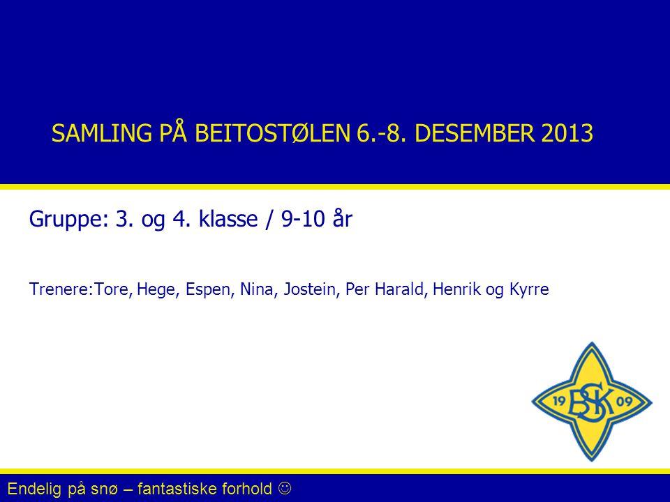 SAMLING PÅ BEITOSTØLEN 6.-8.DESEMBER 2013 Gruppe: 3.