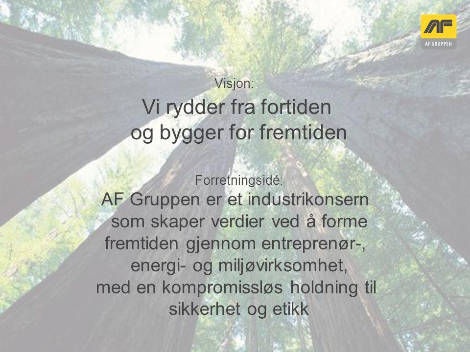 Energi er et av fem virksomhetsområder i AF Gruppen Anlegg Eiendom Miljø Bygg Energi