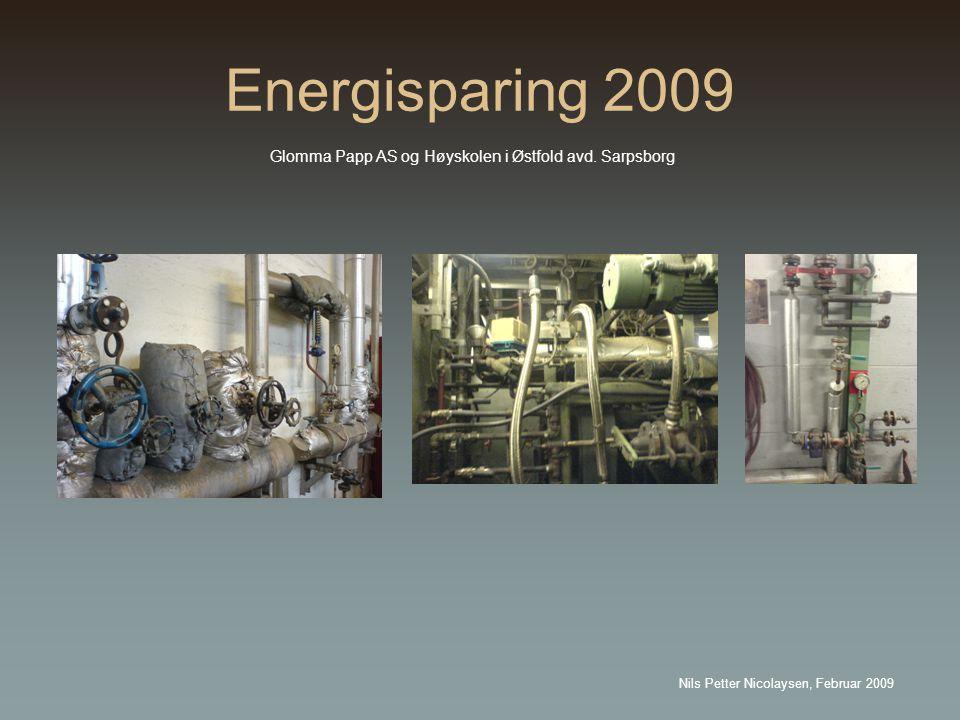 Energisparing 2009 Glomma Papp AS og Høyskolen i Østfold avd.