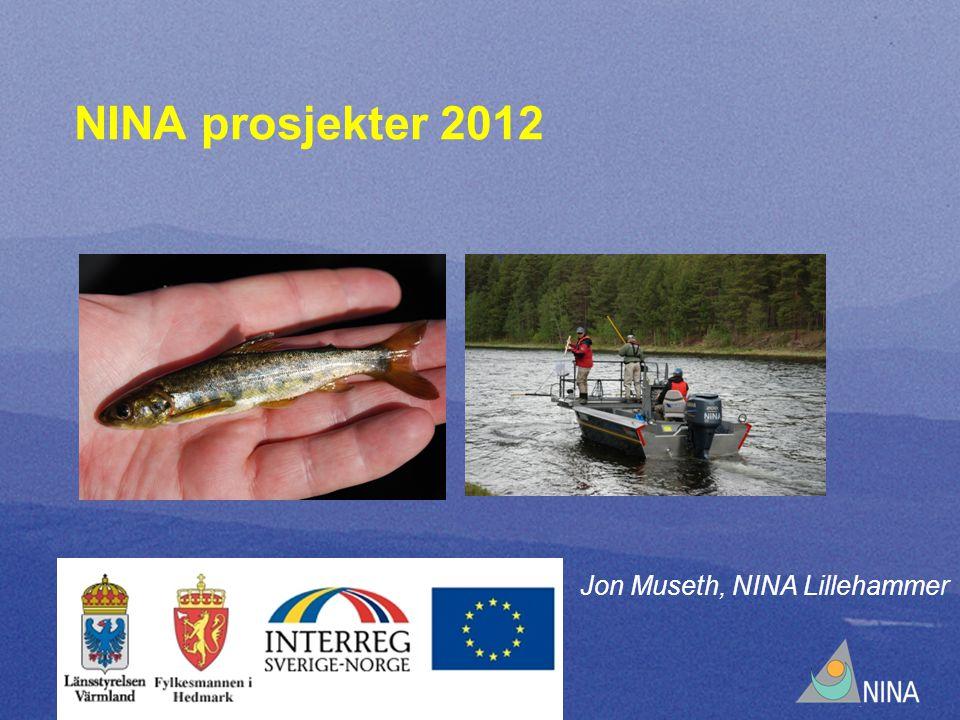 NINA prosjekter 2012 Jon Museth, NINA Lillehammer