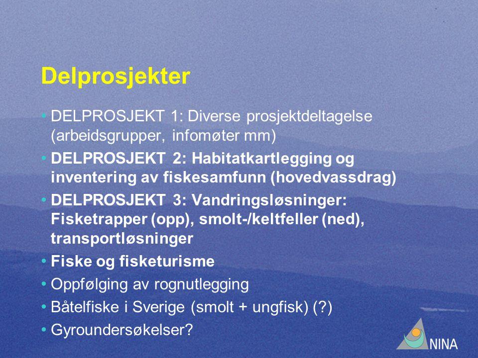 Delprosjekter DELPROSJEKT 1: Diverse prosjektdeltagelse (arbeidsgrupper, infomøter mm) DELPROSJEKT 2: Habitatkartlegging og inventering av fiskesamfunn (hovedvassdrag) DELPROSJEKT 3: Vandringsløsninger: Fisketrapper (opp), smolt-/keltfeller (ned), transportløsninger Fiske og fisketurisme Oppfølging av rognutlegging Båtelfiske i Sverige (smolt + ungfisk) ( ) Gyroundersøkelser