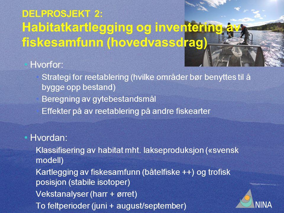 DELPROSJEKT 2: Habitatkartlegging og inventering av fiskesamfunn (hovedvassdrag) Hvorfor: Strategi for reetablering (hvilke områder bør benyttes til å bygge opp bestand) Beregning av gytebestandsmål Effekter på av reetablering på andre fiskearter Hvordan: Klassifisering av habitat mht.