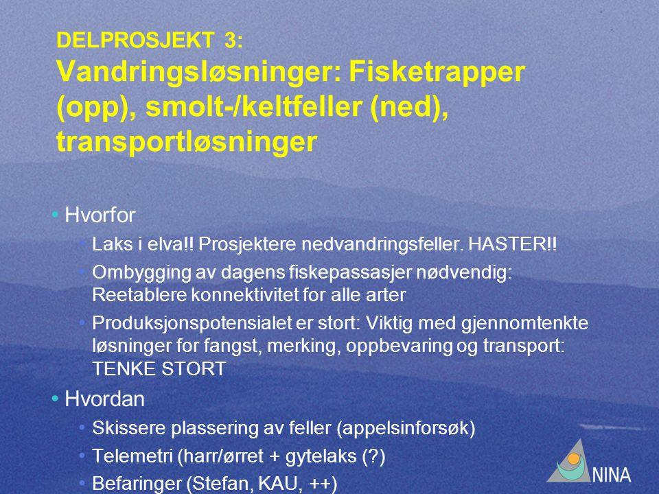 DELPROSJEKT 3: Vandringsløsninger: Fisketrapper (opp), smolt-/keltfeller (ned), transportløsninger Hvorfor Laks i elva!.