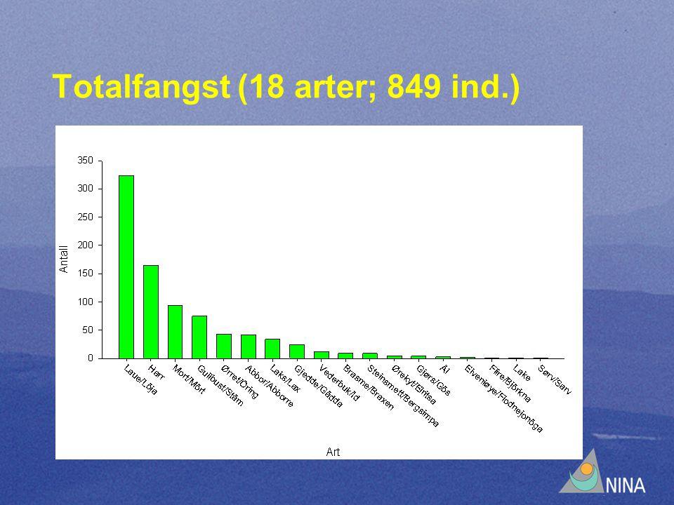 Totalfangst (18 arter; 849 ind.)