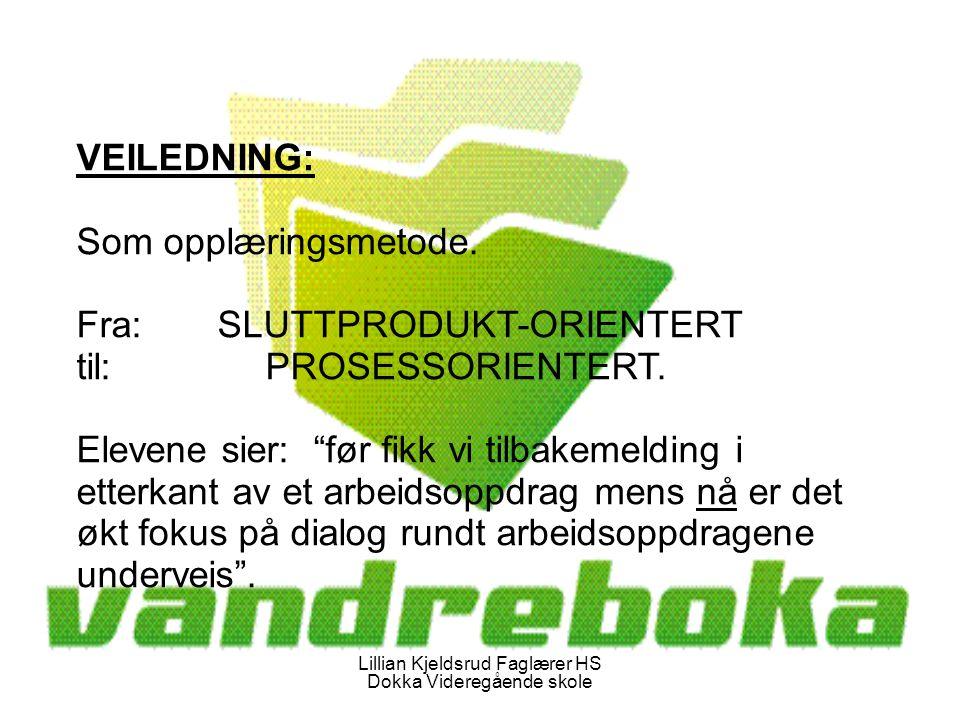 Lillian Kjeldsrud Faglærer HS Dokka Videregående skole VEILEDNING: Som opplæringsmetode.
