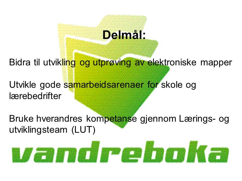 Lillian Kjeldsrud Faglærer HS Dokka Videregående skole