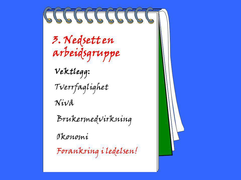 2002 Toril Bakke 3. Nedsett en arbeidsgruppe Vektlegg: Tverrfaglighet Nivå Brukermedvirkning Økonomi Forankring i ledelsen!