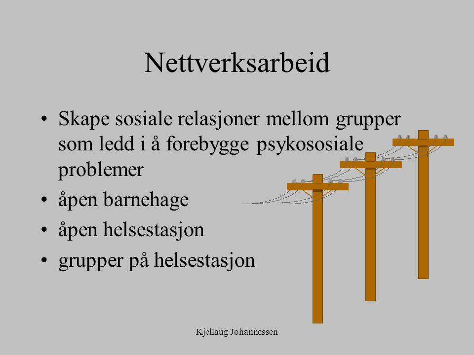 Kjellaug Johannessen Nettverksarbeid Skape sosiale relasjoner mellom grupper som ledd i å forebygge psykososiale problemer åpen barnehage åpen helsestasjon grupper på helsestasjon