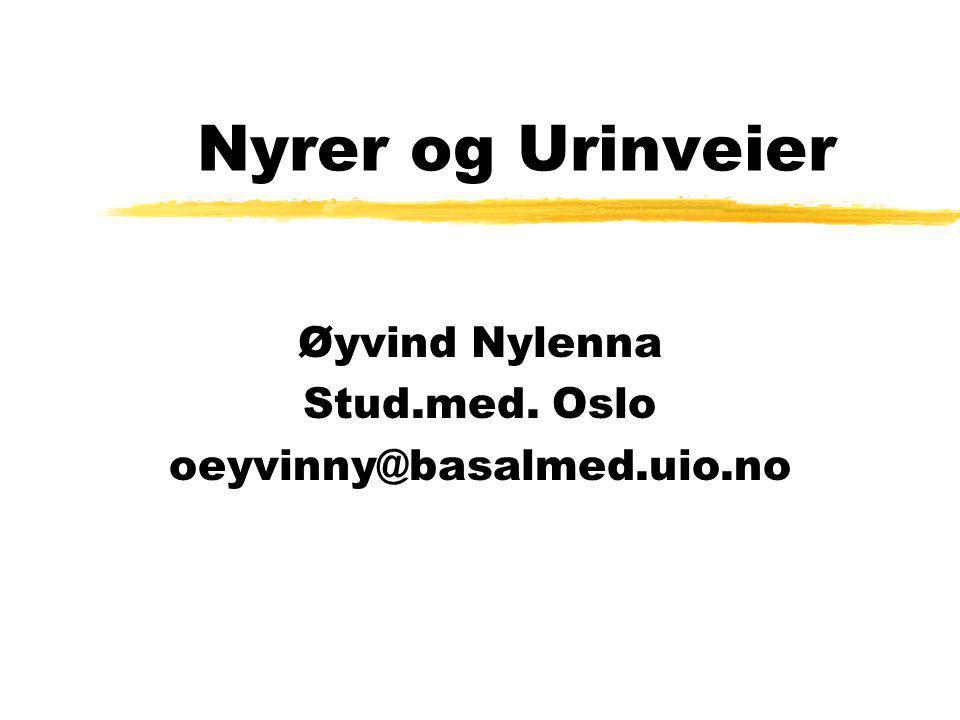 Nyrer og Urinveier Øyvind Nylenna Stud.med. Oslo oeyvinny@basalmed.uio.no