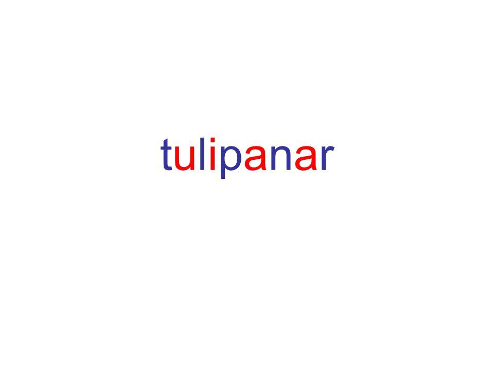 tulipanartulipanar