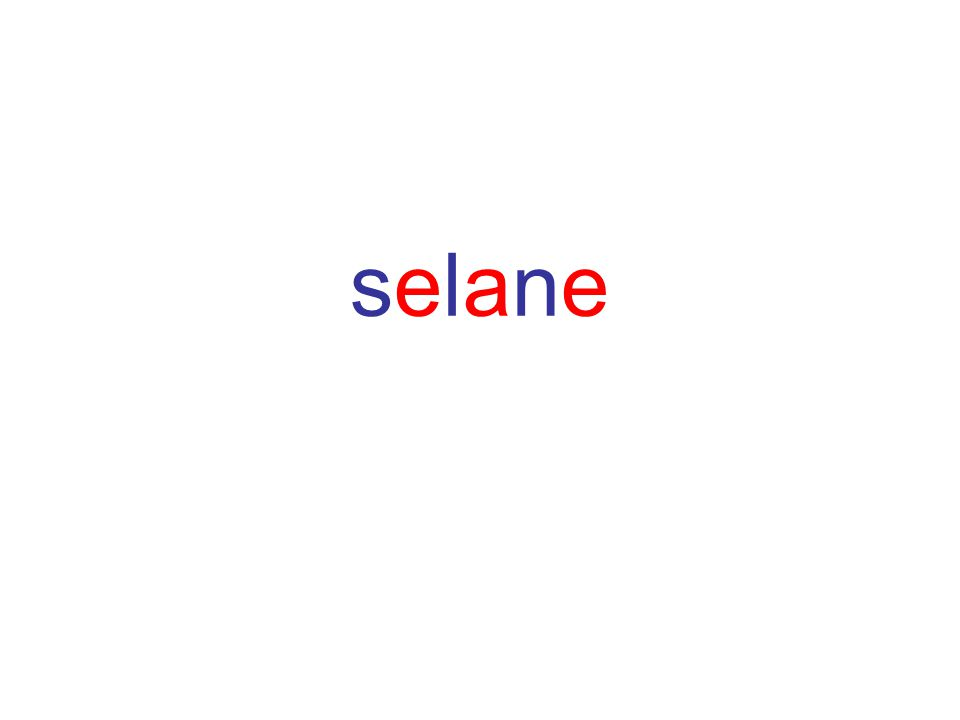 selaneselane